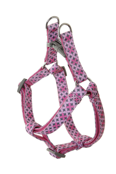 DOOG Harness -  Toto
