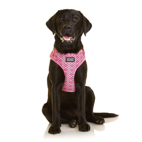 Neoflex Soft Harness - Toto