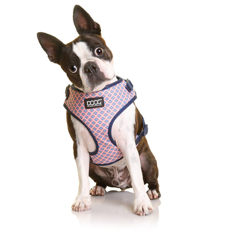 Neoflex Soft Harness - Gromit