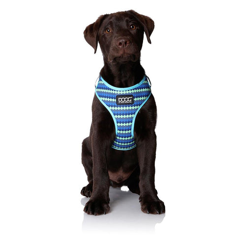 Neoflex Soft Harness - PLUTO