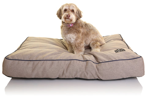 DOOG Home Bed - Sand (brown with blue trim).