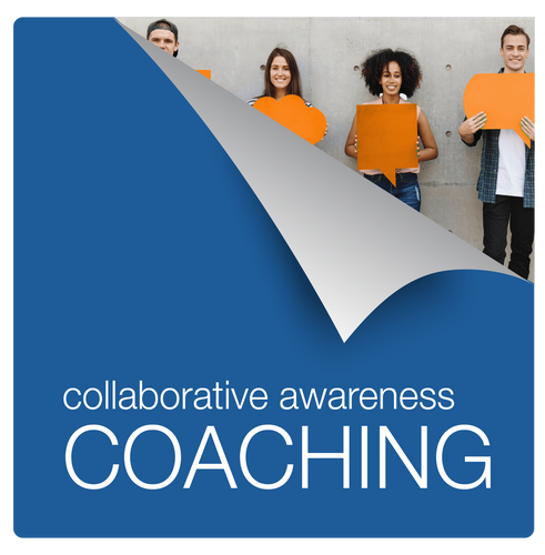TEAM: Clean Mind Collaboration Coaching