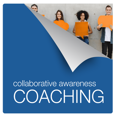 INDIVIDUALS: Clean Mind Collaboration Coaching