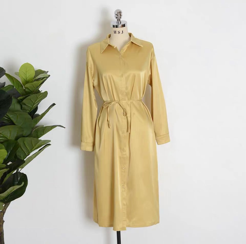 SHIMMER 2 WAY SHIRT DRESS