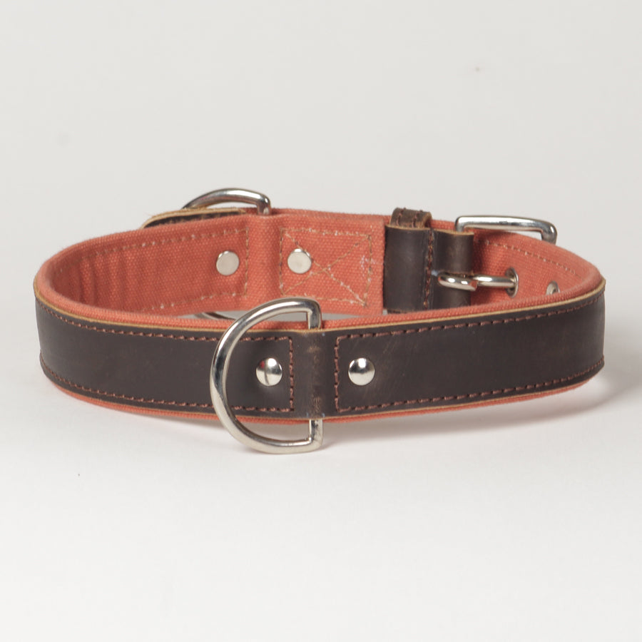 Large Canvas Leather Dog Collar