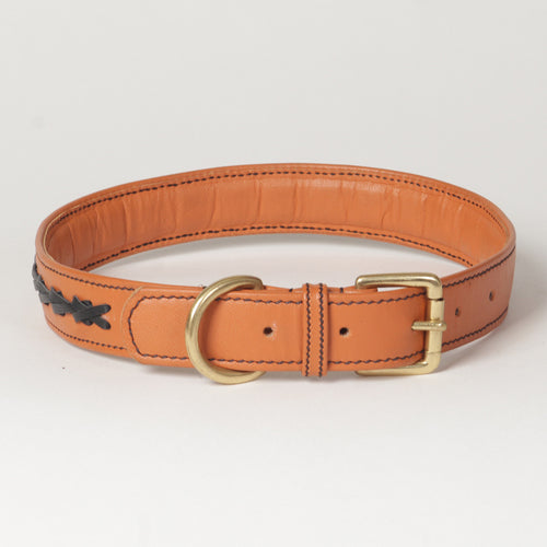 Flair Napa Leather Dog Collar