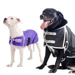600D Waterproof Dog Coat