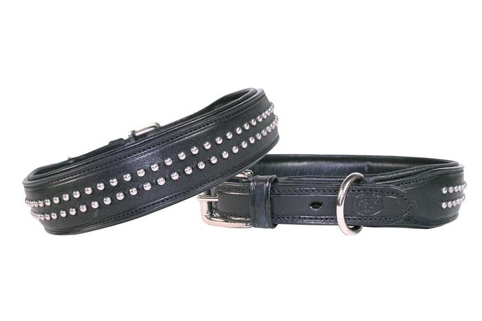 Designer Bully Dog Collar Padded USA Leather