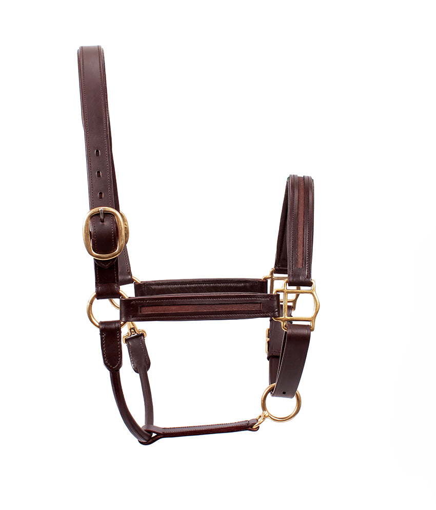 Empty Channel Leather Padded Halter