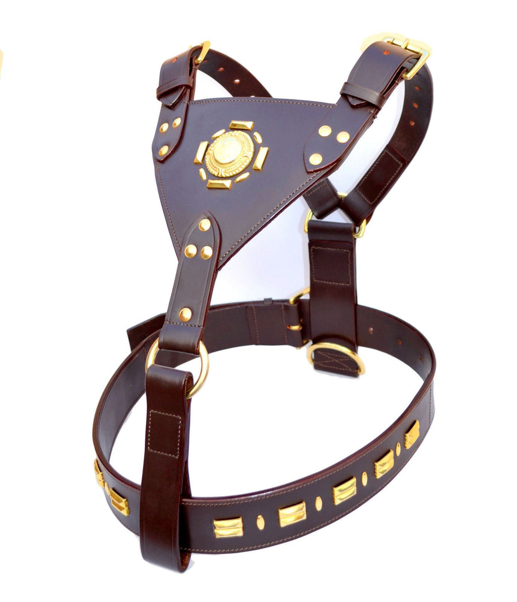 Leather Dog Harness Sun Design