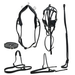 SIE Horse Driving Leather Harness Set - All sizes