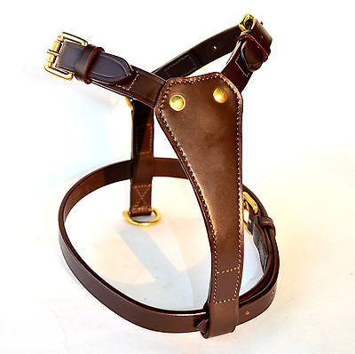 Leather Padded Dog Harness with Lead