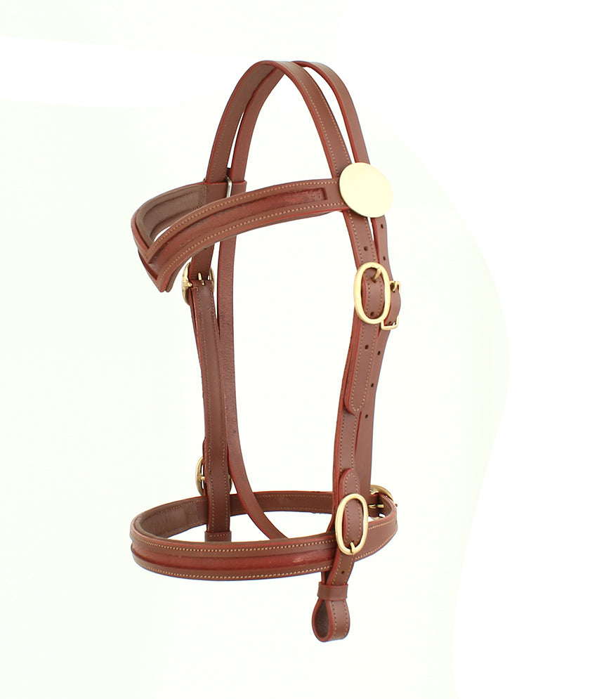 Empty channel western show leather headcollar bridle SIE