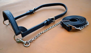 Cattle Halter with matching Fancy Stitching Calf
