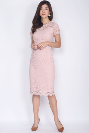 Bedelia Lace Sleeved Pencil Dress In Blush