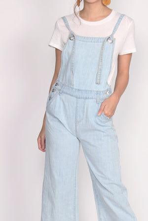 Buffey Tie Up Denim Jumpsuit