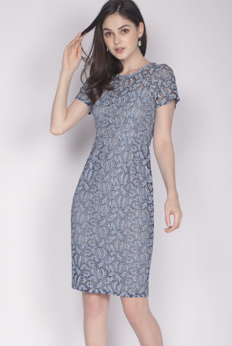 Dallace Lace Sleeved Dress In Blue