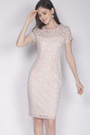 Dallace Lace Sleeved Dress In Pink