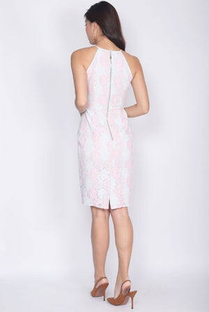 Idonia Halter Lace Dress In Pink Mint