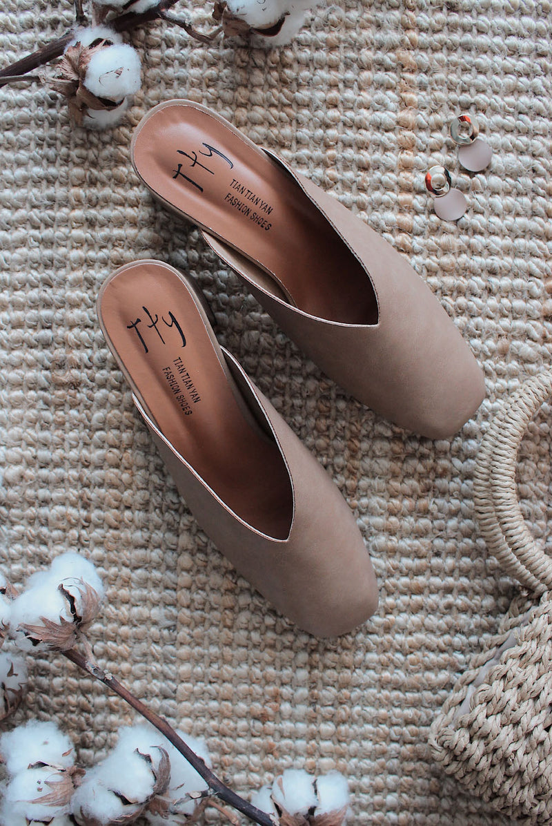 Piperel Pointed Heels In Brown