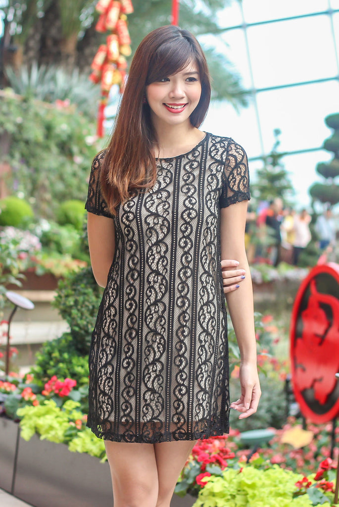 TDC Arianna Lace Shift Dress In Black