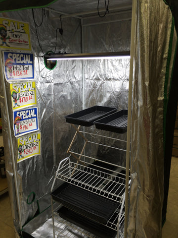 100cm x 100cm x 200cm Flash Grow Tent