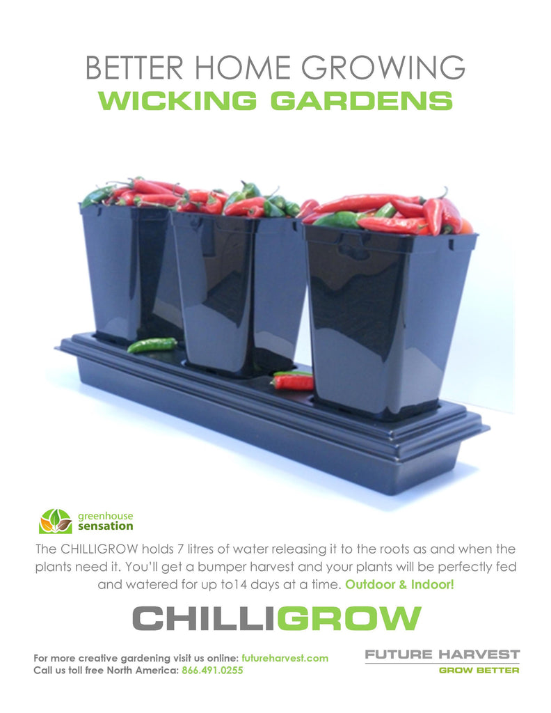 Chilli Grow Complete System