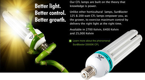125W CFL 25,000 Kelvin BLUE (Propagating)