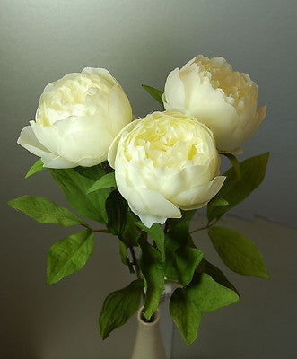 3 Stems of Cream Peonies