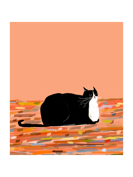 Rug Cat - Tuxedo Time Cat Print