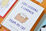 Book- Life Lessons I Learned from My Cat