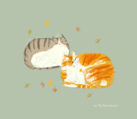 Fall Cats - Pumpkin and Spice - New Print