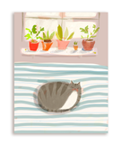 Cat Nap Postcards - Set of 12