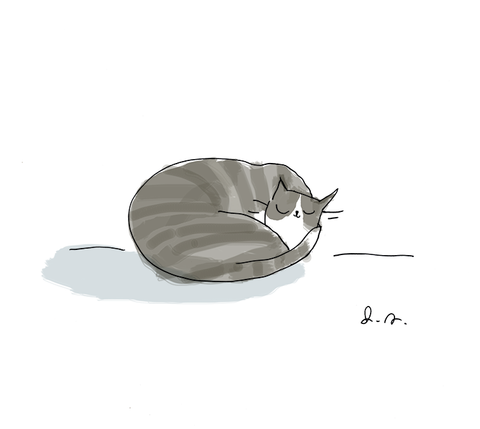 Cat Nap Print- Grey Cat - Find Your Bliss