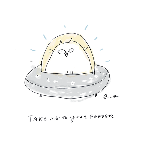 Take Me to Your Feeder - Cat Print