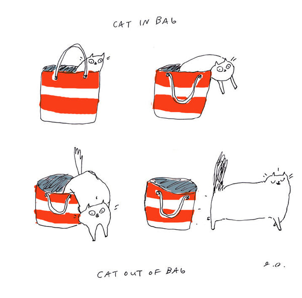 Cat in Bag, Cat Out of Bag - Large Print