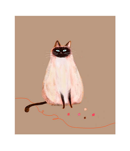 Siamese Beauty - Cat Print