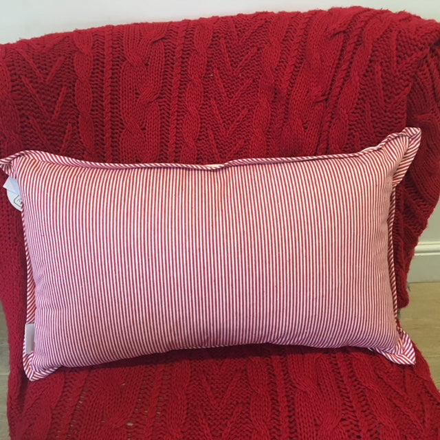 Reverse of Cushion with Ticking Stripe