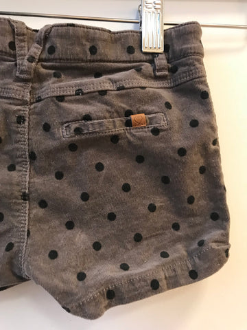 Zara Dot Shorts