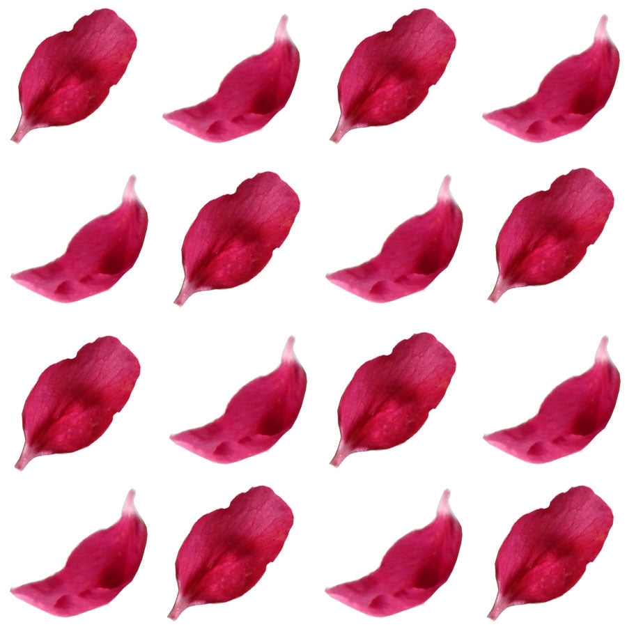 Apple petals magenta, 250 pcs, $7.75 CAD