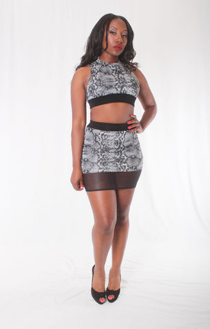Snakeskin Print Skirt Set