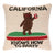 California Republic State Flag Throw Pillow