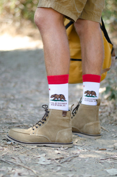 California Republic Striped Socks - Men's