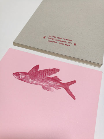 A5 Memo Pad - Flying Fish