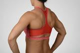 """The Cole"" Chestee Sports Bra in Heathered Red"