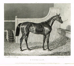 Antique Sporting Prints