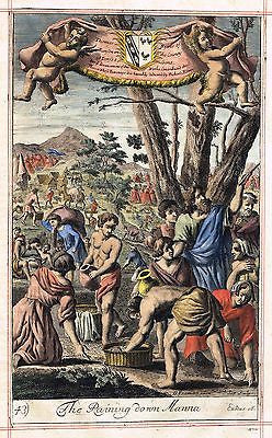 "Blome's Bible History- ""RAINING DOWN MANNA"" by Kip -H-C Engraving -1701"