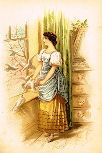"Mary A. Lathbury's Monthly Beauties - ""FEBRUARY BEAUTY"" - Tinted Chromolithograph - 1885"