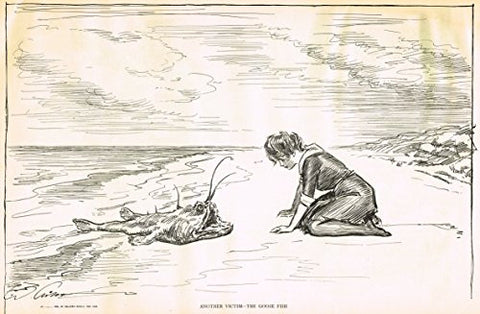 "The Gibson Book - ""ANOTHER VICTIM - THE GOOSE FISH"" - Lithograph - 1907"