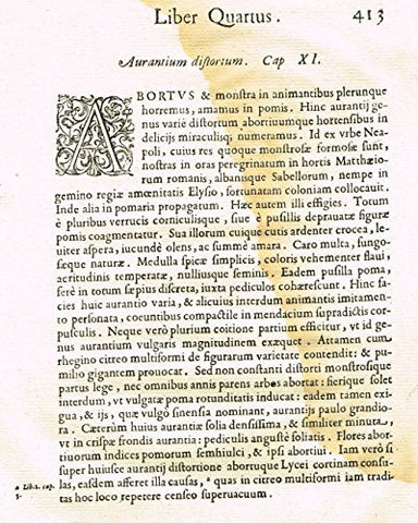 "Ferrari HESPERTHUSA'S - ""ILLUMINATED INITIAL - A, Page 413"" - Copper Engraving - 1646"